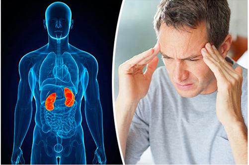 Bệnh thận yếu là gì? có ảnh hưởng đến sức khoẻ và đời sống sinh lý nam giới không?