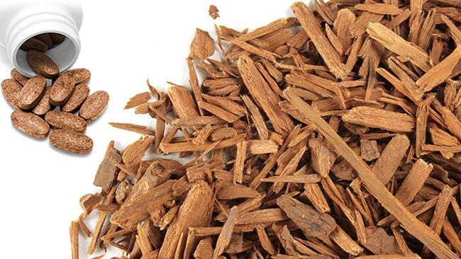 Trong nhiều thế kỷ qua, vỏ cây Yohimbe cũng được sử dụng để điều trị nhiều bệnh khác như sốt, phong, ho nhưng dùng nhiều nhất vẫn là kích thích tình dục