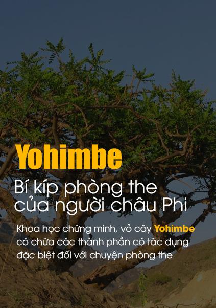 """Yohimbe được coi như """"thần dược"""" phòng the của người Châu Phi"""