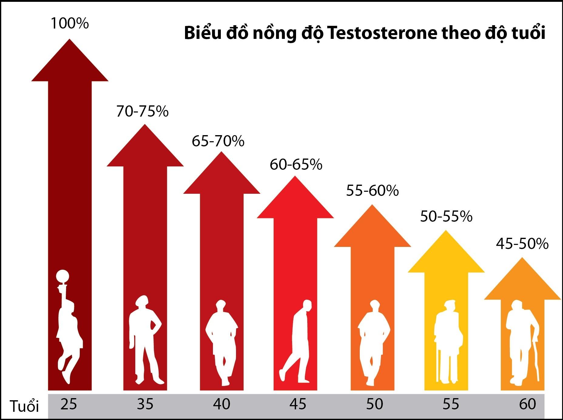 Theo thời gian, nồng độ testosterone dần suy giảm, đặc biệt từ tuổi 40 trở đi sẽ có sự sụt giảm nhanh chóng
