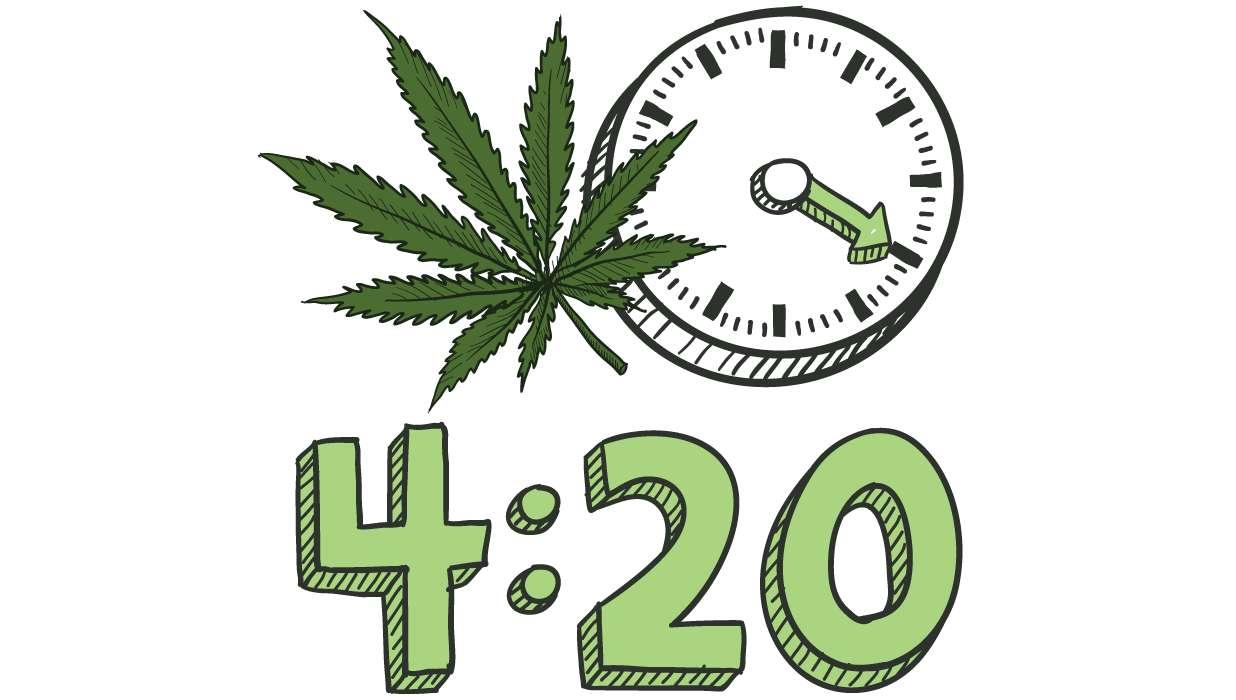 420 ẩn ý là người hay hút cần sa
