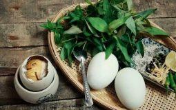 Ăn hột vịt lộn giúp nam giới cải thiện yếu sinh lý, tăng ham muốn và sung sức hơn khi quan hệ
