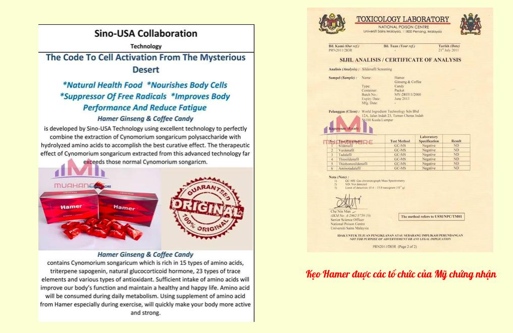 Kẹo sâm Hamer được cấp chứng nhận và nghiên cứu phát triển bởi Trung tâm nghiên cứu The Sino-USA Collaboration Technology hợp tác với trường y tế Alabama University Medical USA